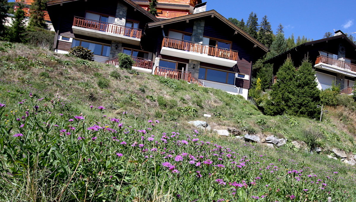CHALET TILLY - 2161